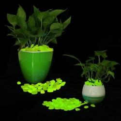 ProCart® dekoratív foszforeszkáló kavicsok, világoszöld, külső és belső dekoráció