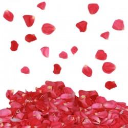 Tun confetti petale trandafiri, 60 cm, pentru evenimente speciale
