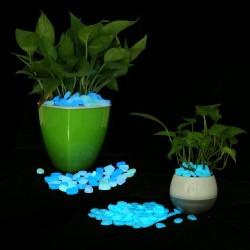 Pietricele fosforescente glow albastre lumineaza aqua