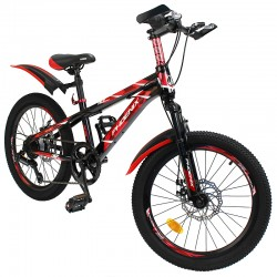 Phoenix Mountain Bike, 20...