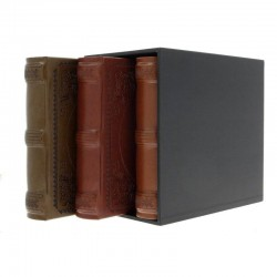 Set 3 albume foto DeLuxury, 10x15, 600 poze, piele eco, cutie decorativa neagra